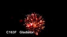 C163F Gladiator