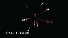 C163H Palice