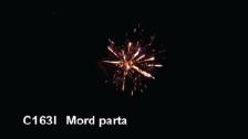 C163I Mord parta