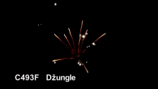 C493F Džungle
